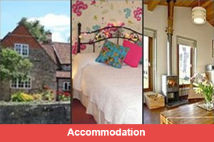 Accommodation in Glastonbury