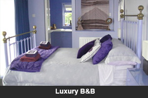 Luxury B&B
